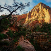 Zion Canyon Overlook Hike