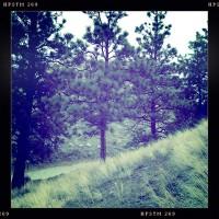 Munson Mountain nature photography iphone hipsatamtic images