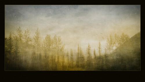 Rain-Forest-TapestryW