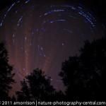 Star trails-prologue