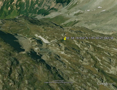 map-bear1